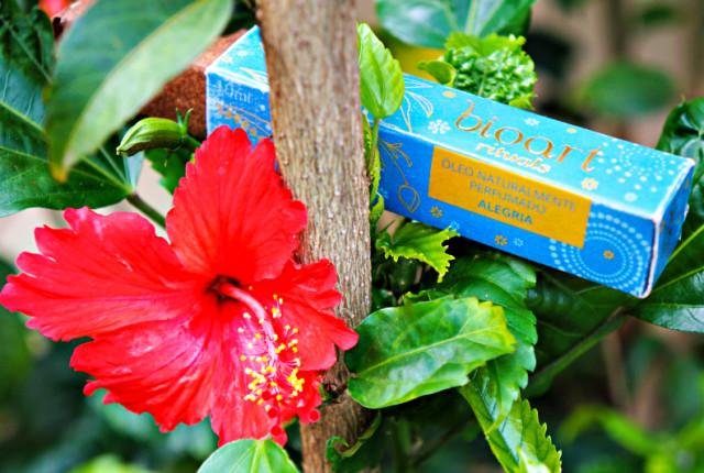 Óleo Naturalmente Perfumado Bioart ALEGRIA