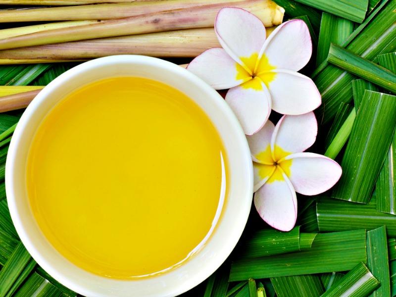 3 Receitas de repelentes naturais com óleo essencial de Citronela