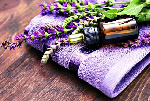 Agenda de Cursos de Aromaterapia e Aromatologia IBRA 2016